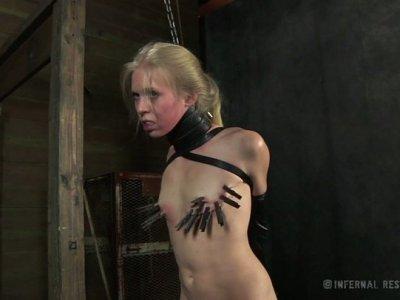 Curvaceous pale skin gal Sarah Jane Ceylon gets her titties pinned